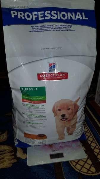 Royal canin mini adult 8 kg • Find billigste pris