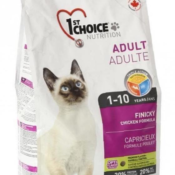 Royal Canin для кошек: обзор видов, состав, советы ветеринара