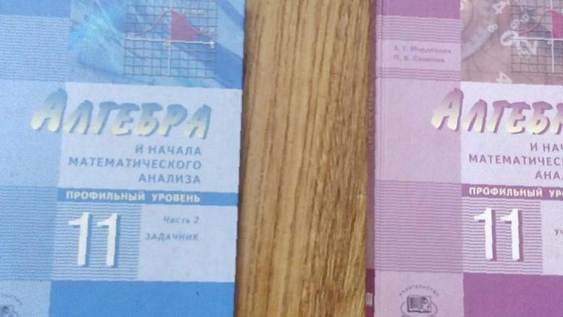 Учебник Алгебра 10 11 Класс Мордкович Профильный Уровень Задачник