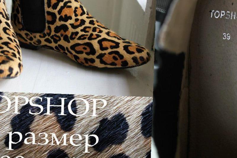 7f48ce94d Купить в Вейделевке: Леопардовые ботинки казаки topshop – объявления ...
